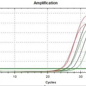 Soil DNA Isolation Kit data