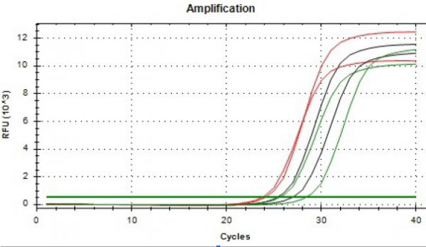 Cells and Tissue DNA Isolation Kit data