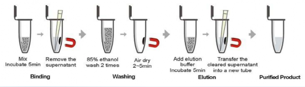 Soil DNA Isolation Kit process