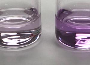 Formaldehyde Detection Kit
