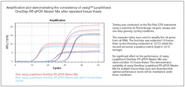2XRT-qPCR MMX graph