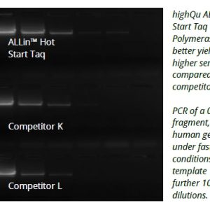 ALLin™ Hot Start Taq Polymerase, 5 u/µl