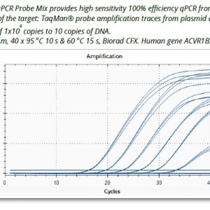 Ora qPCR Probe ROX H Mix image