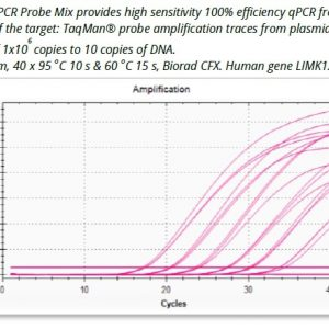 Ora qPCR Probe ROX L Mix image