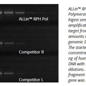 Allin RPH Polymerase image