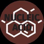 Nucleic Acid Attogene Icon