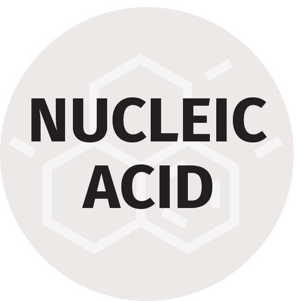 Nucleic Acid Attogene Icon