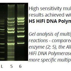allin_mega_hs_hifi_polymerase_1